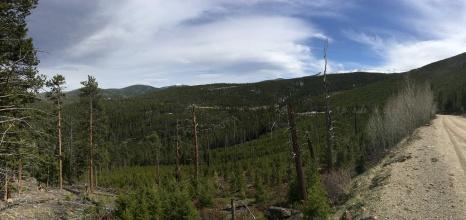 Upper Pingree Valley