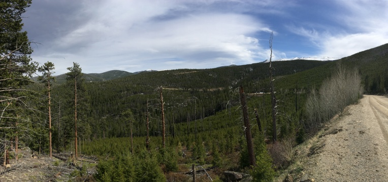 Upper Pingree Valley