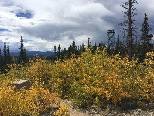 Fall colors at the tower, 10,700'