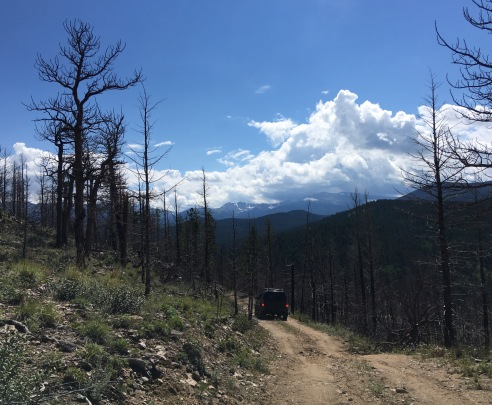 Descent into Pingree valley